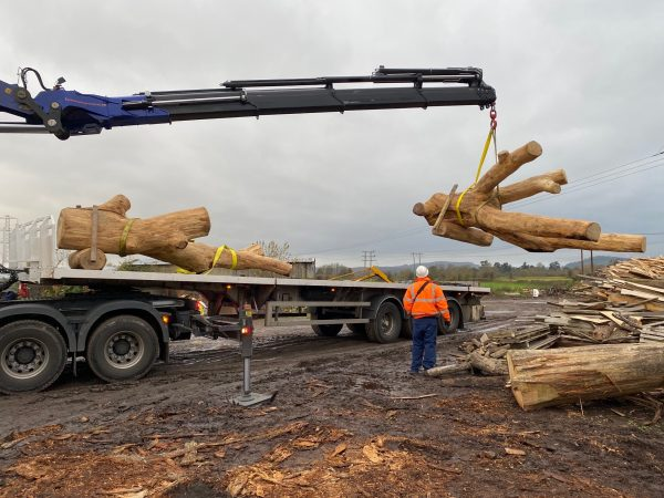 Play Tree Delivery Loading