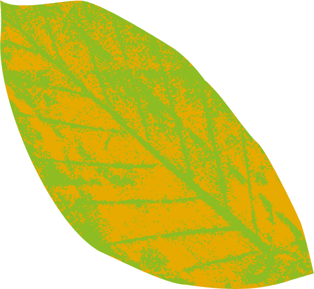 Natural Play Green and Yellow Leaf
