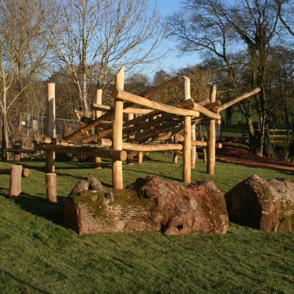 Large Logs